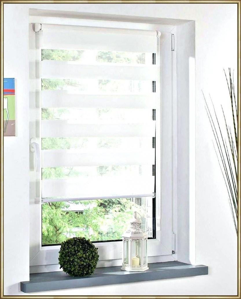 40 Genial Fenster Rollos Innen Verdunkeln  Lapetitemaisonnyc von Fenster Rollos Für Innen Bild