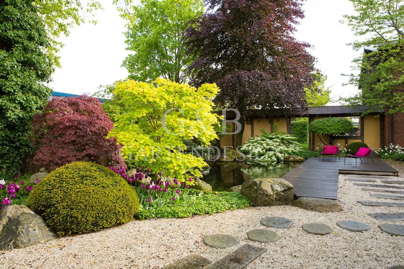 8 Innovativ Pflanzen Fur Japanischen Garten Bilder  Vorteiles von Pflanzen Im Japanischen Garten Photo