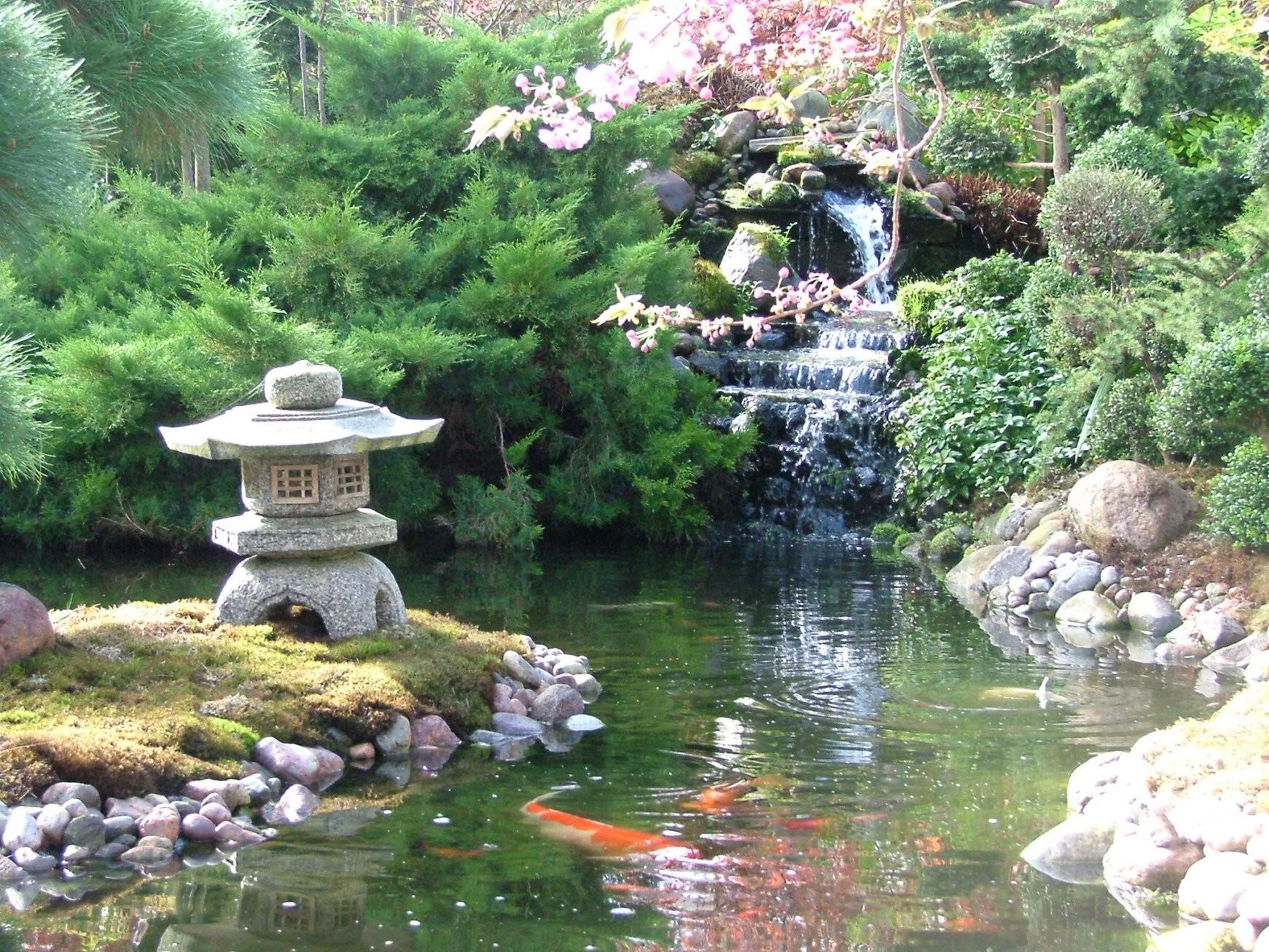 Anleitung Japanischen Garten Selbst Gestalten Wir Klären Auf von Pflanzen Japanischer Garten Anlegen Photo