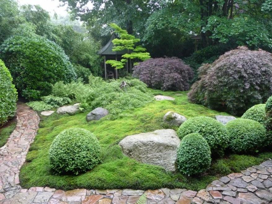 Dekorationen Luxus Pflanzen Für Japanischen Garten Japanischer von Pflanzen Im Japanischen Garten Bild