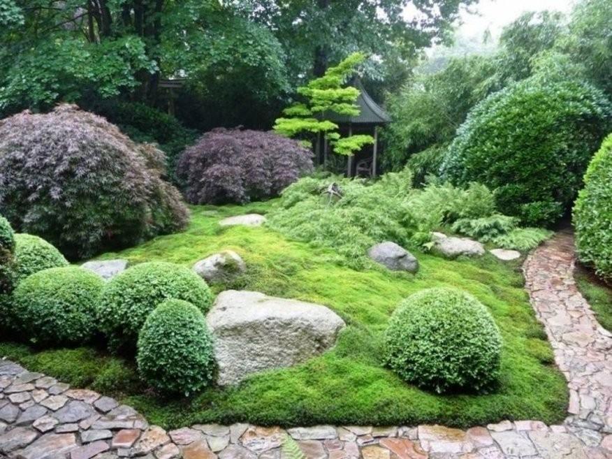 Elegantes Japanischer Garten Pflanzen Innenarchitektur Pflanzen Von von Pflanzen Japanischer Garten Anlegen Bild