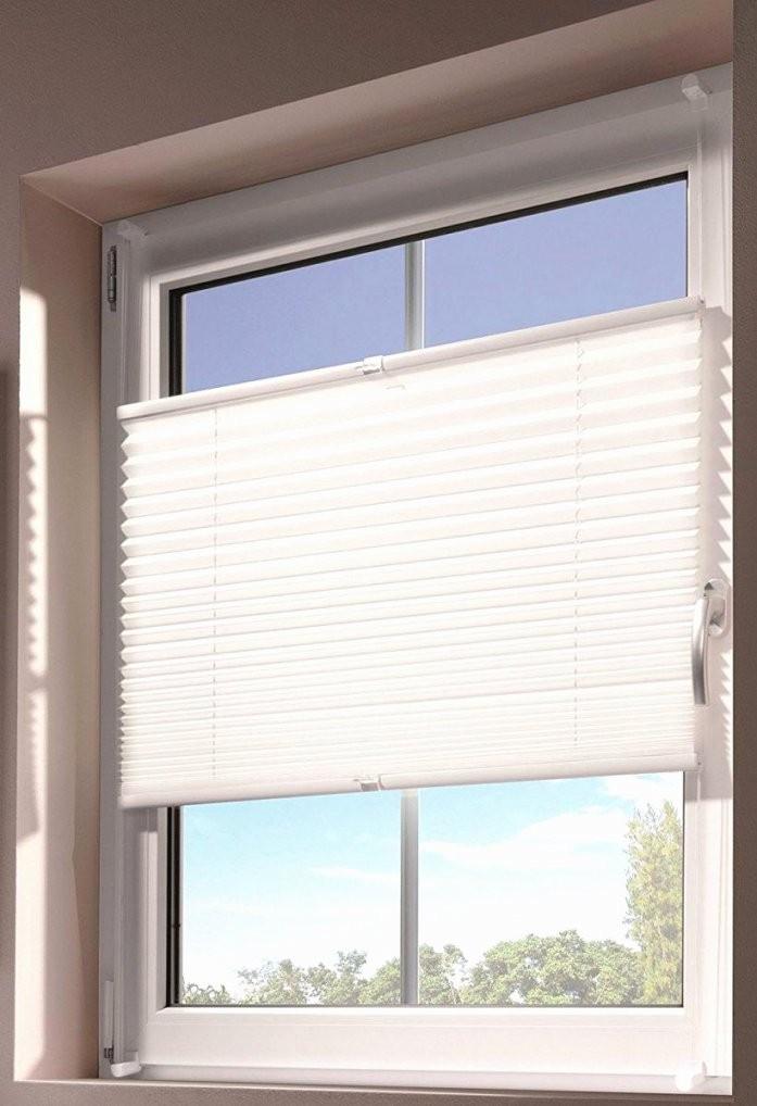 Fensterrollos Für Innen Genial 19 Schön Sichtschutz Für Fenster von Fenster Rollos Für Innen Bild