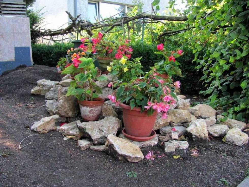 Gartenanders Hübsche Gartendekoration Vertuscht Hässliche Ecken von Garten Verschönern Mit Steinen Photo