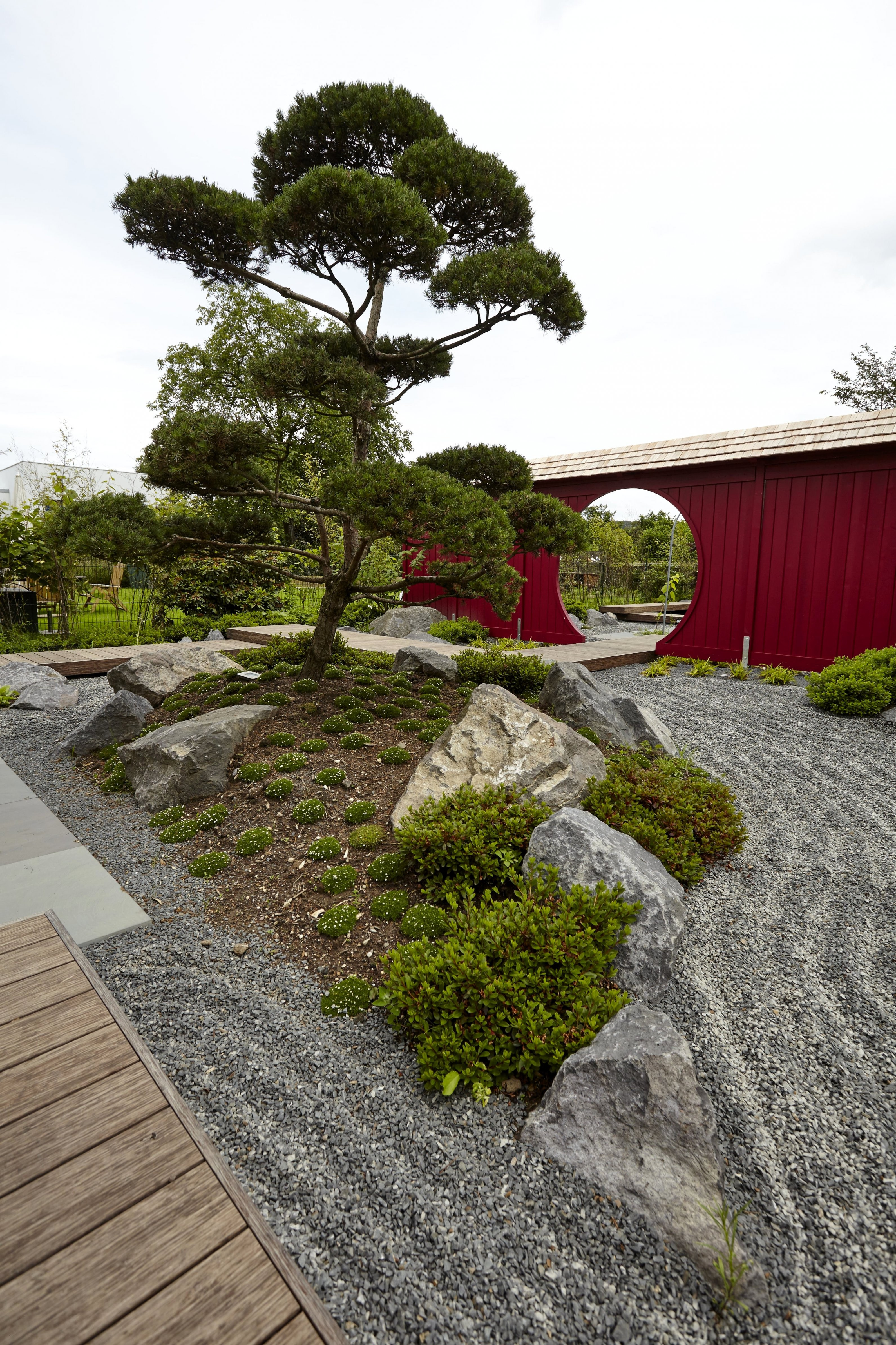 Gartengestaltung Japanischer Garten Mit Einzigartig Pflanzen von Pflanzen Im Japanischen Garten Photo