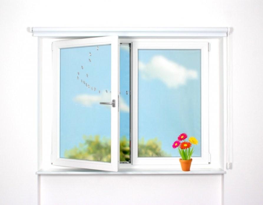 Günstige Jalousien Plissees Rollos  Fenster Mit Rollo  Plissee von Günstige Rollos Für Fenster Photo