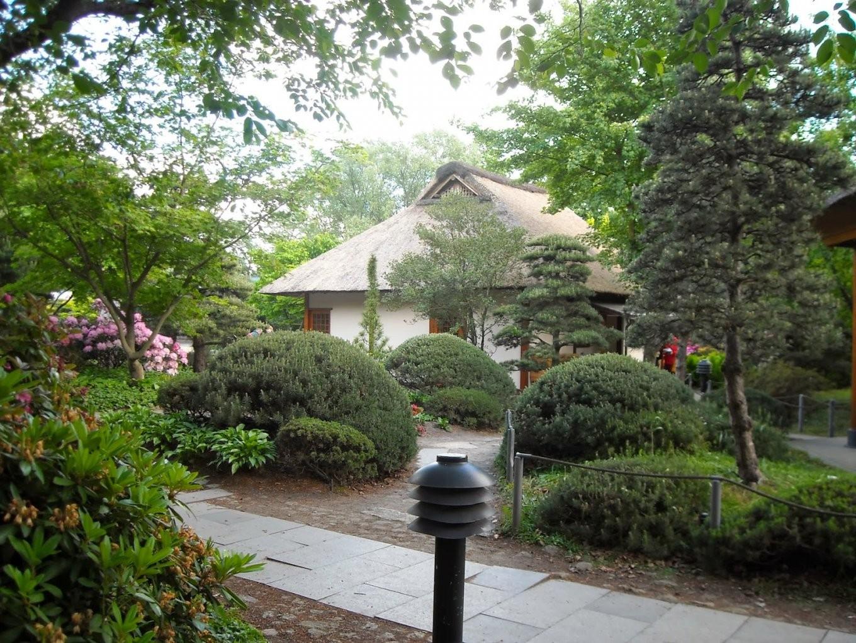Japanfreunde Hamburg Japan In Hamburg Besondere Orte von Japanischer Garten Bilder Kostenlos Bild