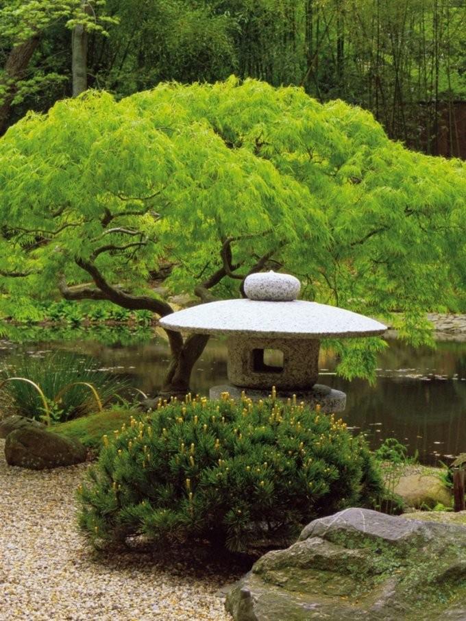 Japanischen Garten Anlegen  Wichtige Elemente Der Gartengestaltung von Pflanzen Japanischer Garten Anlegen Photo