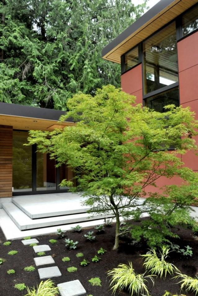 Japanischer Ahorn Im Garten  50 Gestaltungsideen von Japanischer Garten Gestaltungsideen Photo