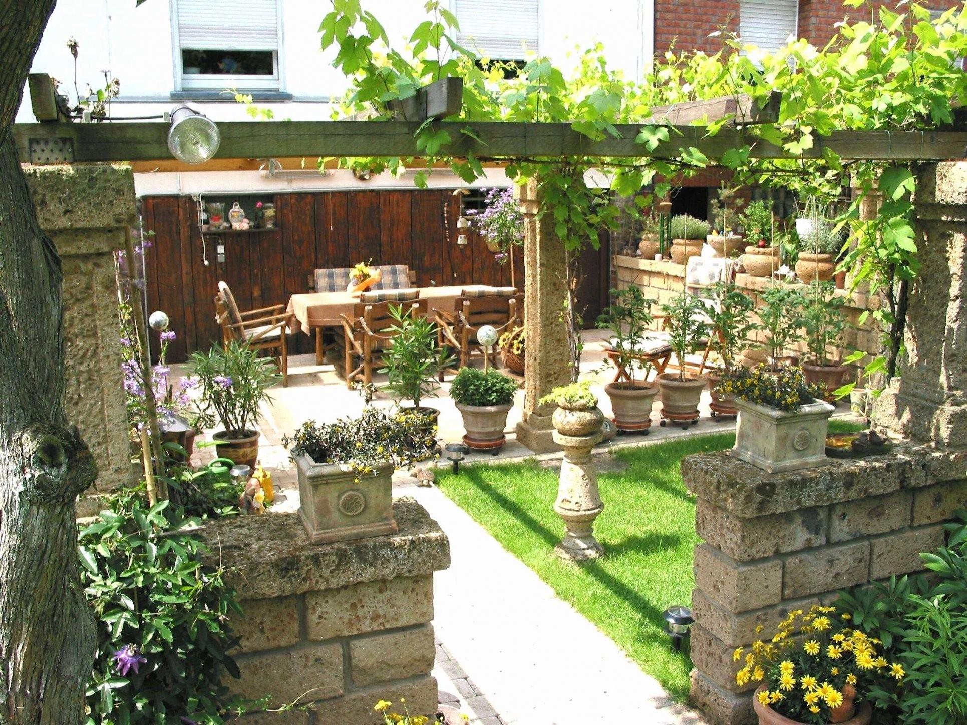 Japanischer Garten Bilder Kostenlos Schön Sichtschutz Hpl Hecke Am von Japanischer Garten Bilder Kostenlos Bild