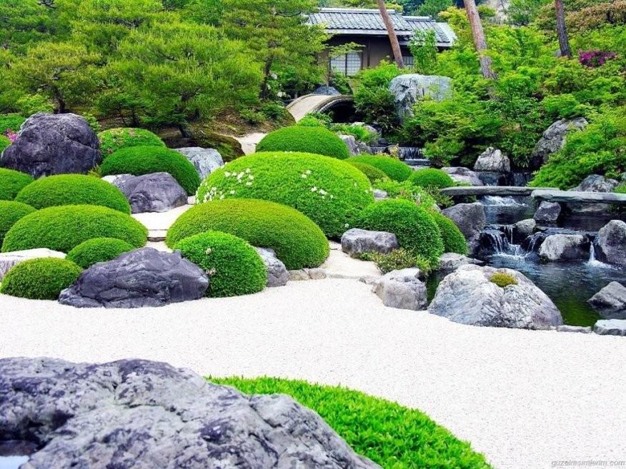 Japanischer Garten Einen Japanischen Garten Anlegen Von Japanischer von Pflanzen Für Japanischen Garten Photo