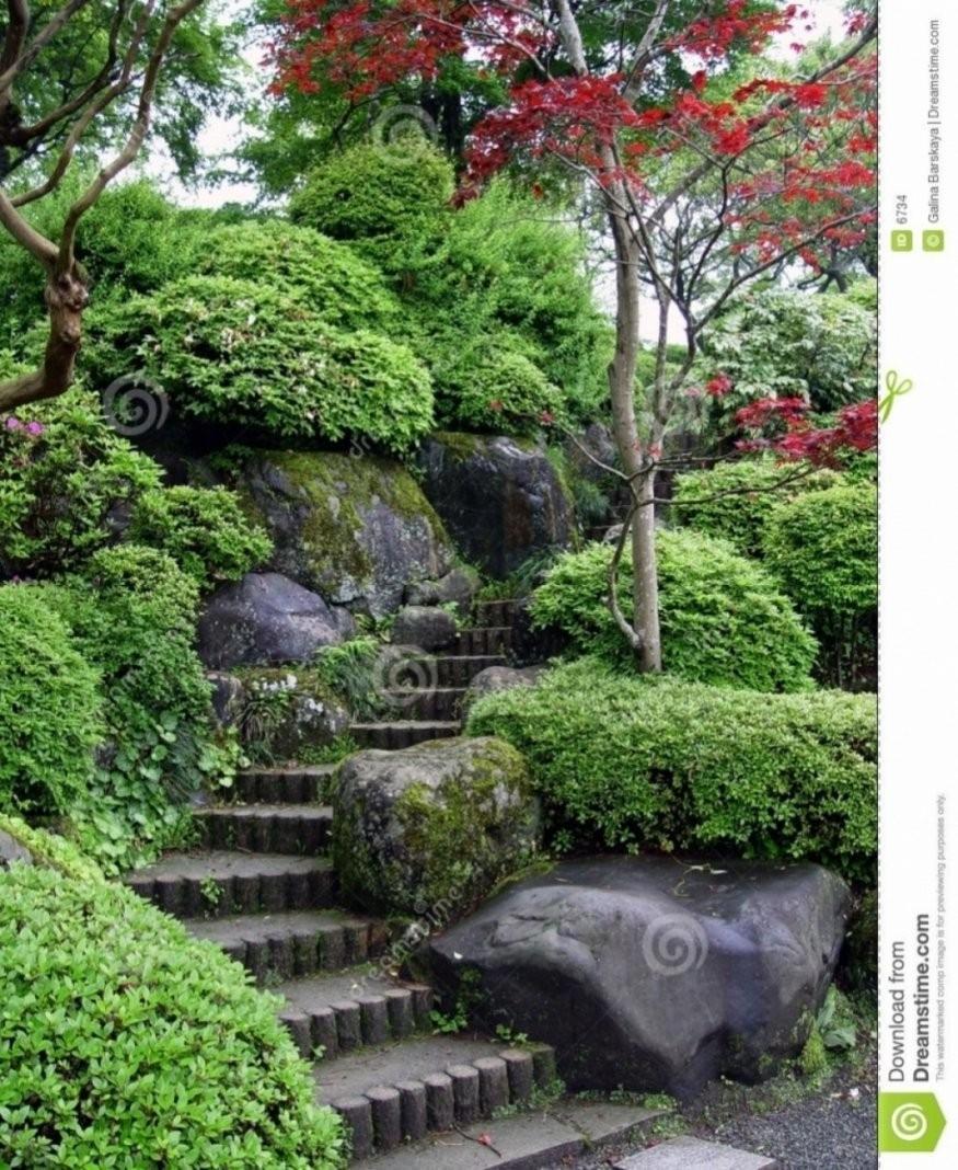 Pflanzen Für Japanischen Garten Ebenbild Das Sieht Ehrfurcht von Bepflanzung Japanischer Garten Photo