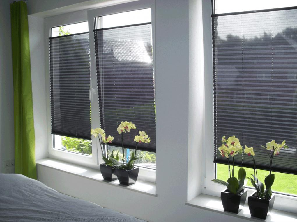 Plissee Rollo  Der Perfekte Sichtschutz Für Fenster  Plissee von Plissee Rollos Für Fenster Photo