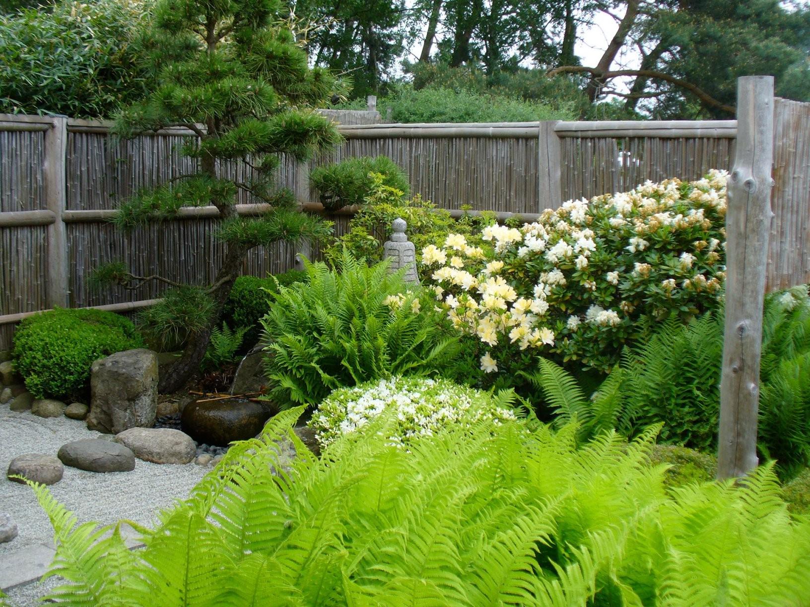 Roji Japanische Gärten  Roji Japanische Gärten Japanischer Garten von Pflanzen Japanischer Garten Anlegen Photo