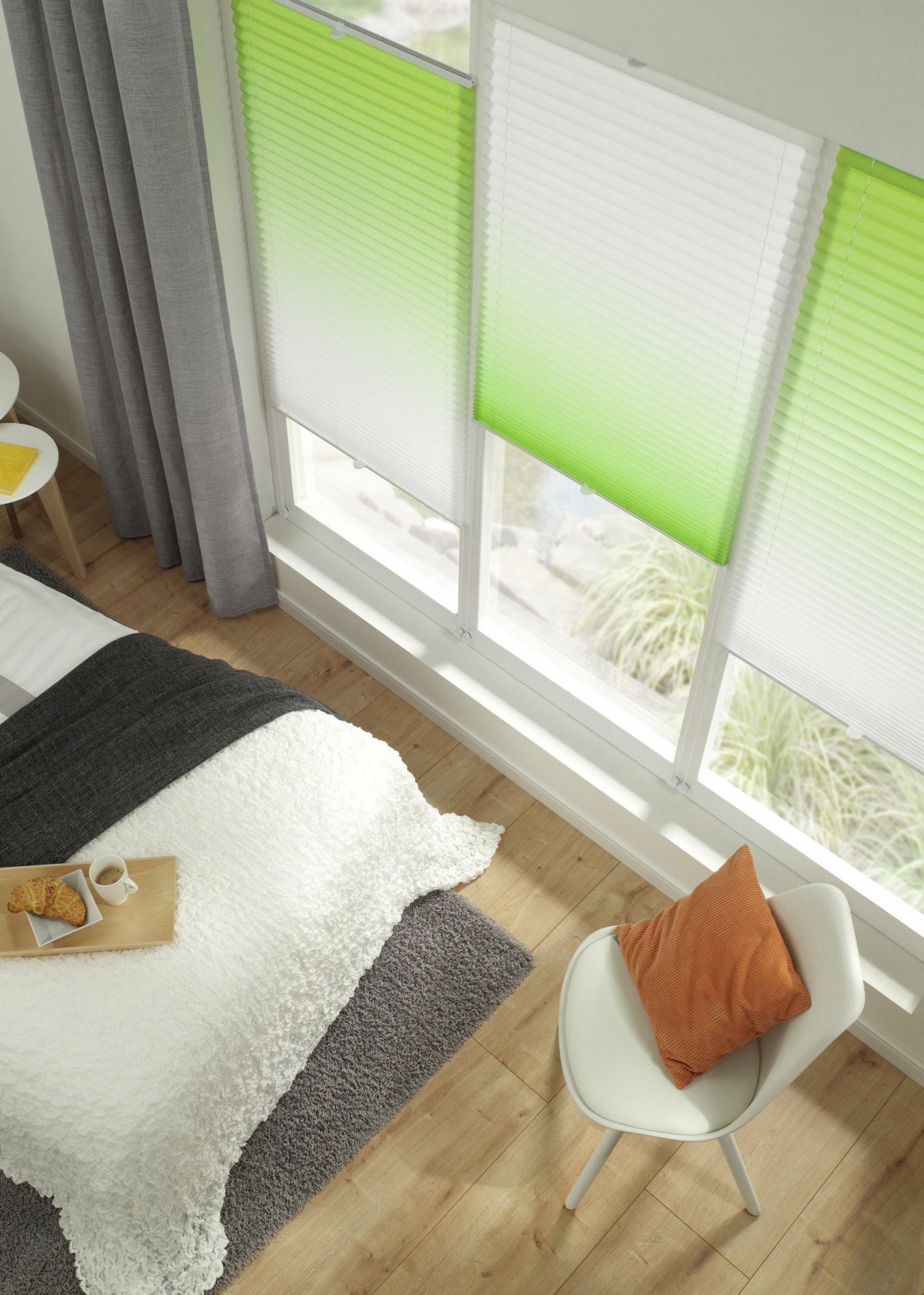 Rollos Für Fenster Innen & Plissee Günstig ⋆ Lehner Versand von Fenster Rollos Günstig Bild