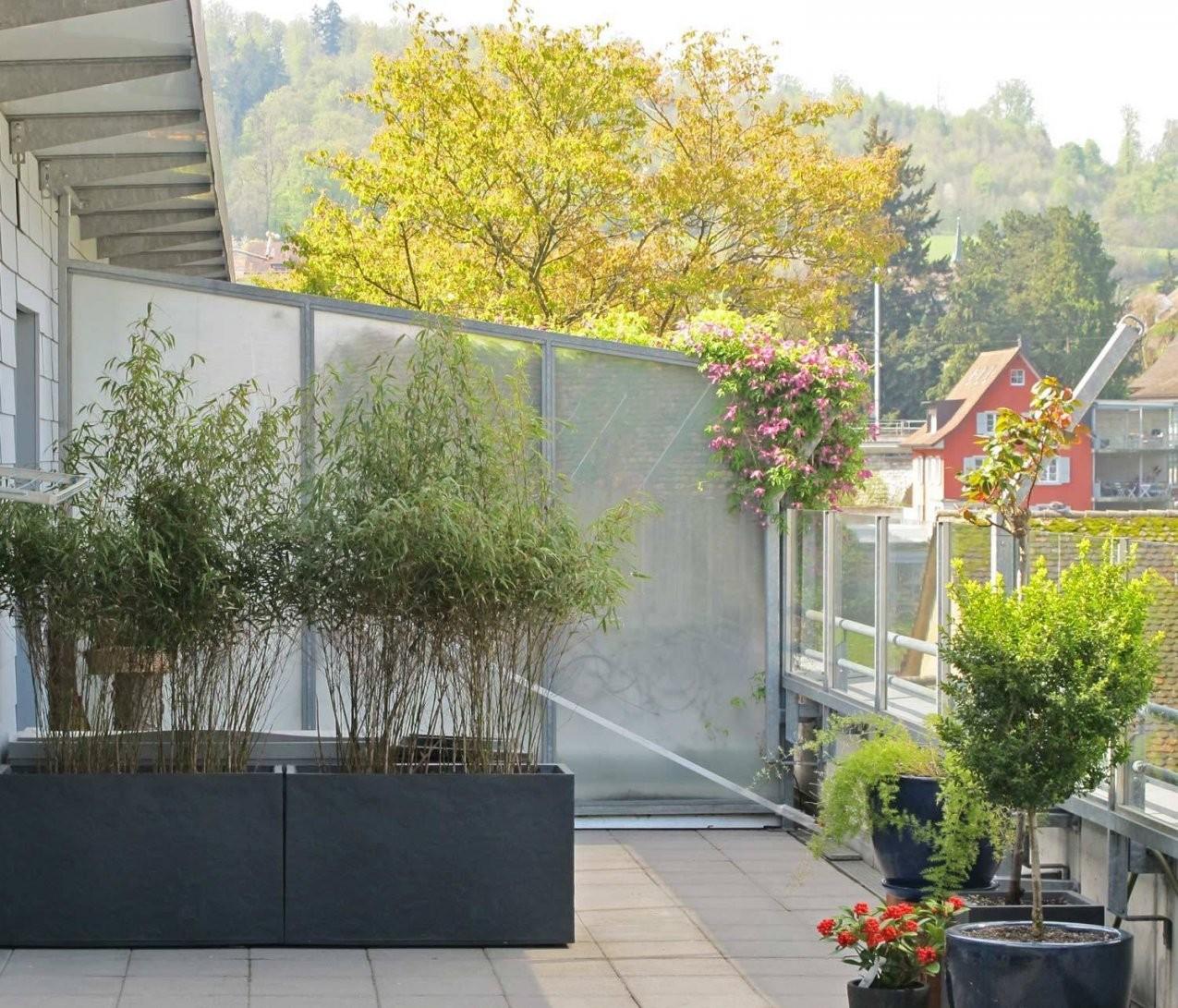 Sichtschutz Garten Kunststoff Bauhaus Swappingtons Von Sichtschutz von Bauhaus Steine Garten Bild