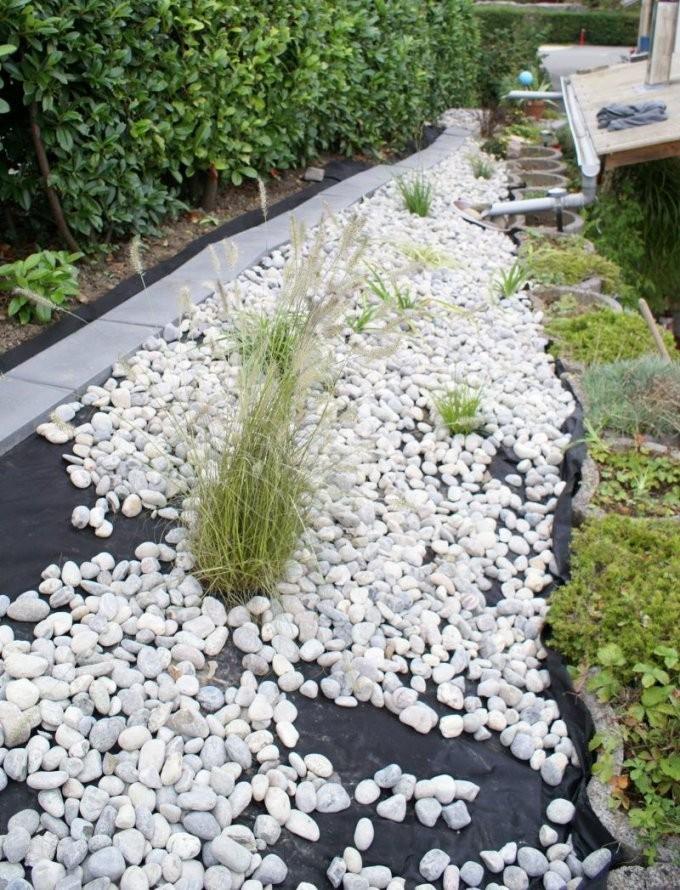 Steinbeet Anlegen Anleitung Pflegetipps Und Bepflanzung  Garten von Weiße Steine Garten Bild