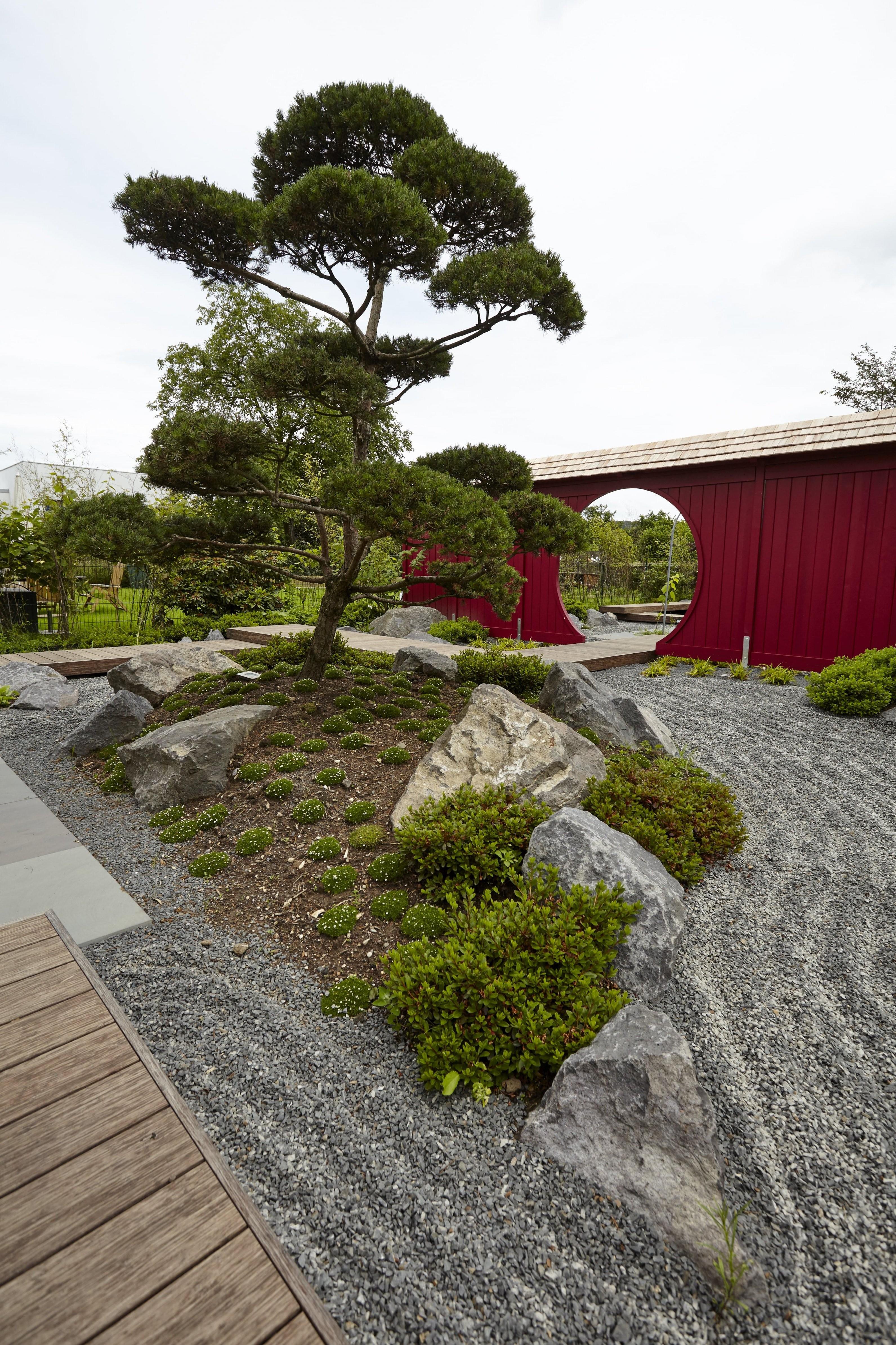 Traumhaftes Wohnen Im Garten Mit Wunderschöner Japanischer von Bepflanzung Japanischer Garten Bild