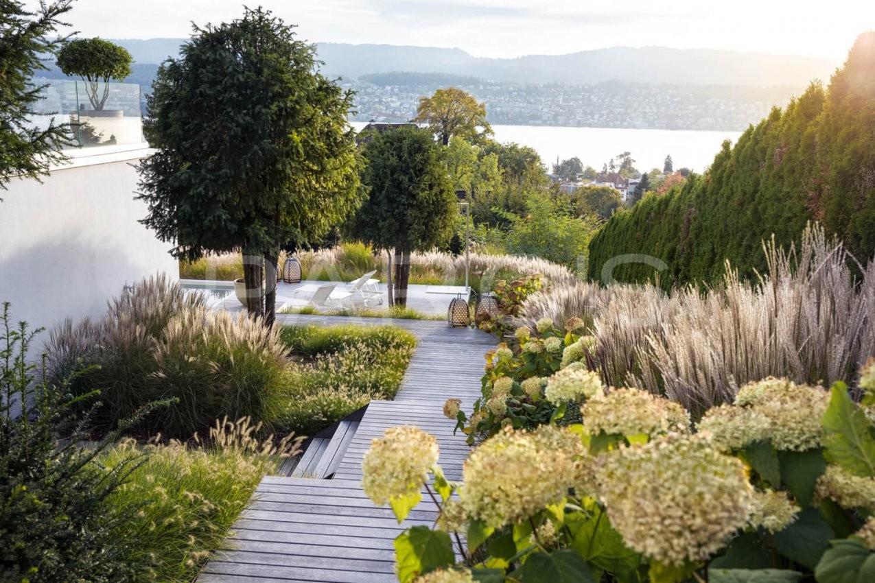 Villengarten Mit Üppiger Bepflanzung  Parc's Gartengestaltung von Bepflanzung Japanischer Garten Photo