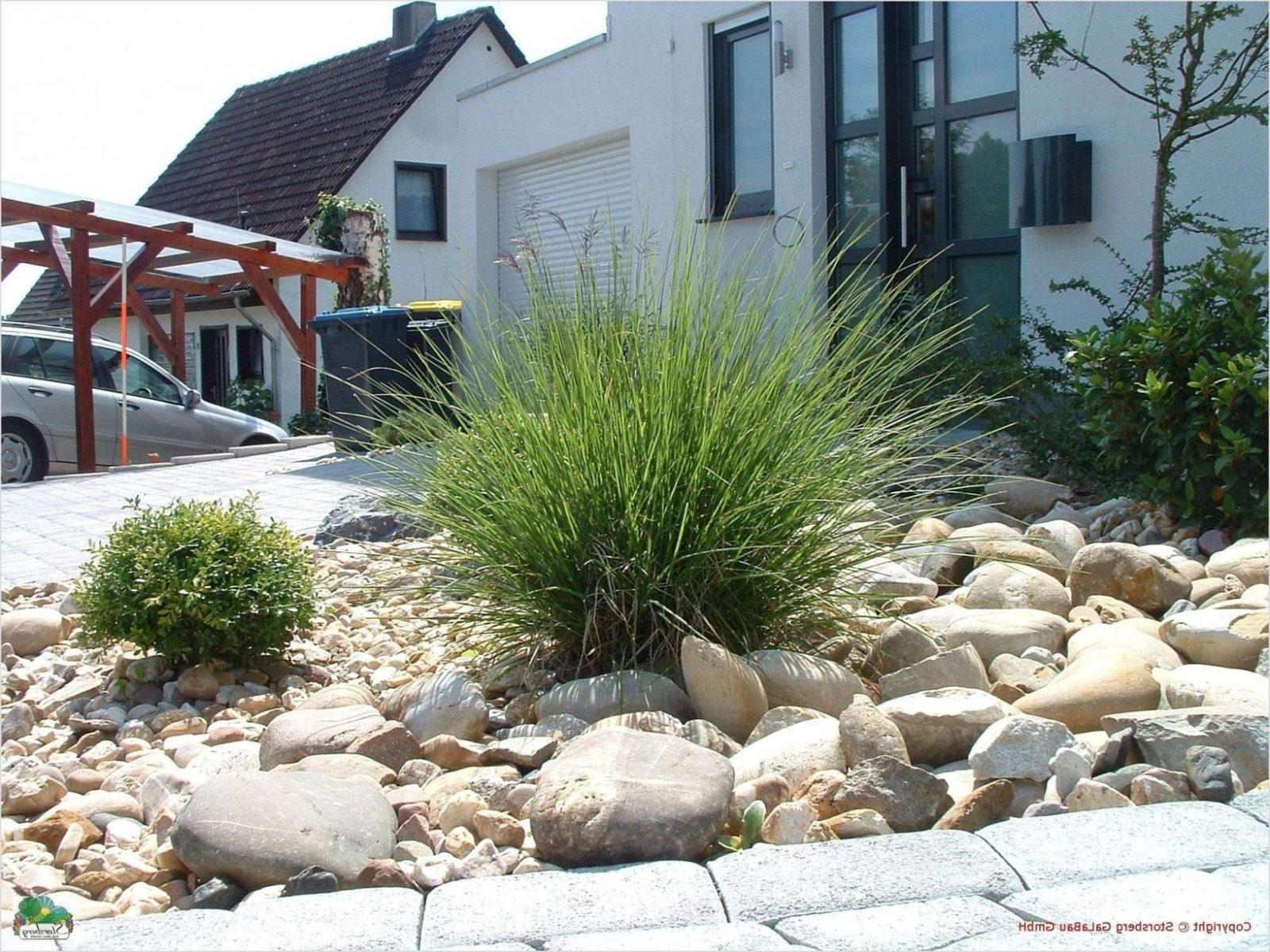 20 Schön Frisch Gartengestaltung Mit Steinen Und Grasern Modern von Garten Mit Steinen Gestalten Bild