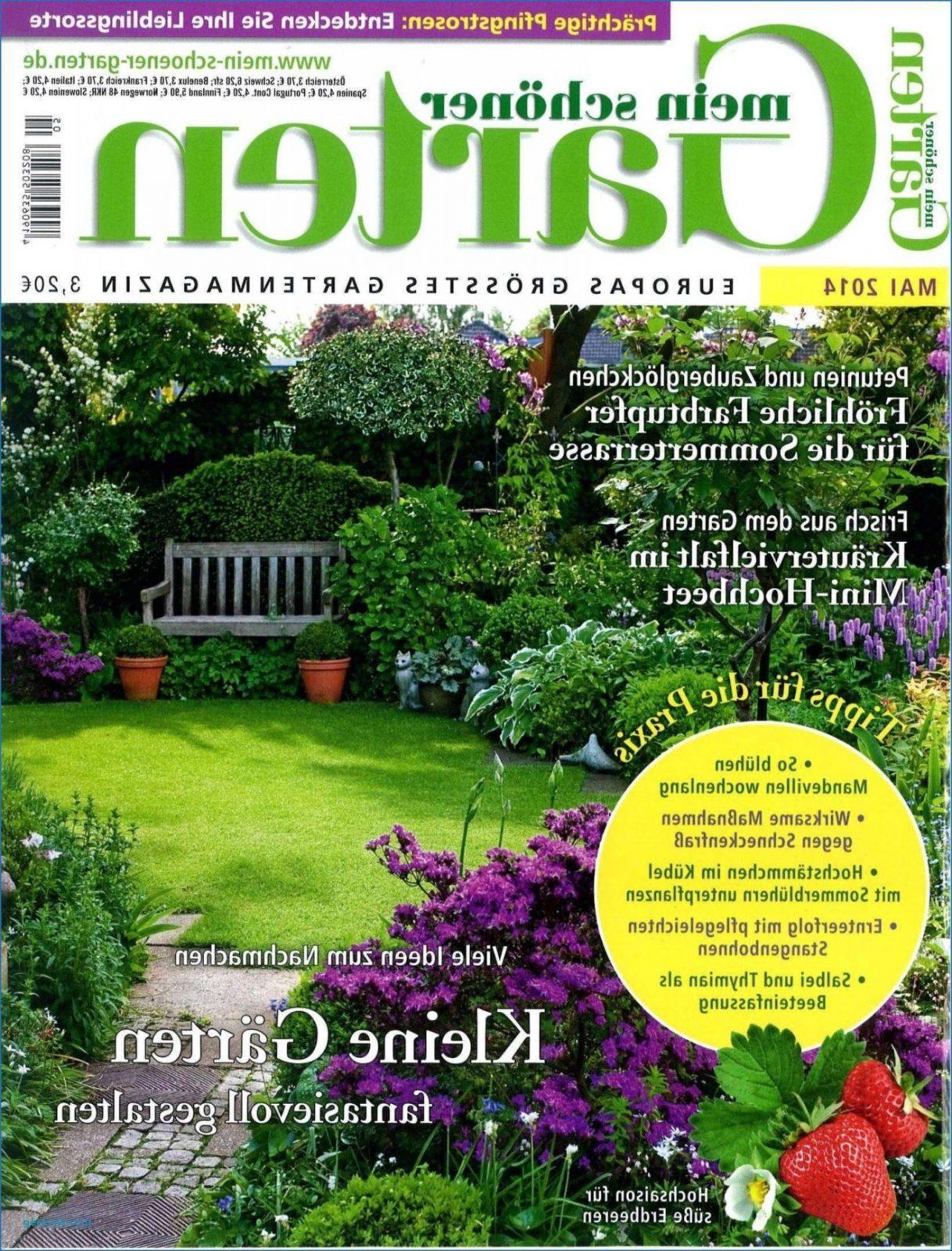 31 Genial Mein Schöner Garten Lidl Das Beste Von Schema Von Wohnen von Mein Schöner Garten Lidl Photo