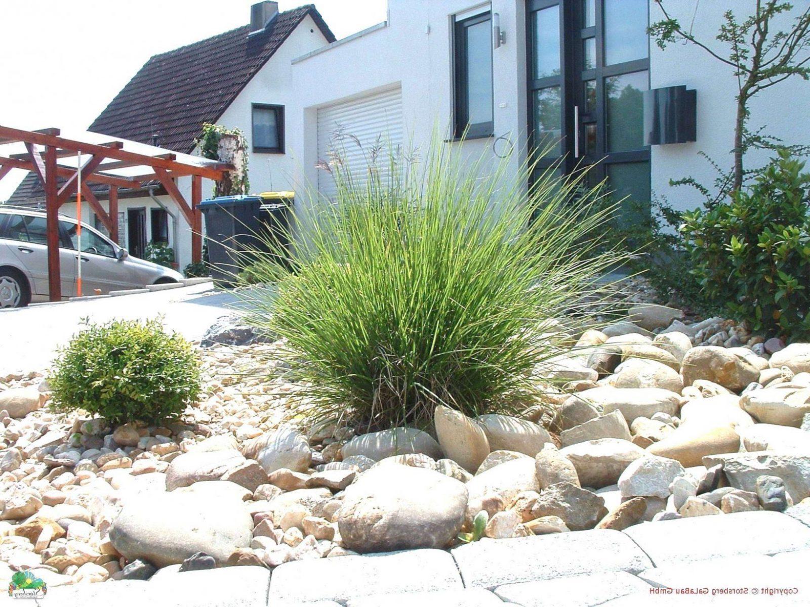 32 Neu Moderner Garten Mit Gräsern von Gartengestaltung Mit Steinen Und Gräsern Bild