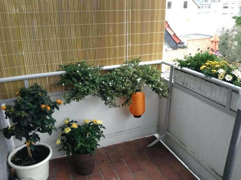 48 Konzept Zum Balkon Gestalten Mit Wenig Geld  Garten Ideen In von Balkon Gestalten Mit Wenig Geld Bild