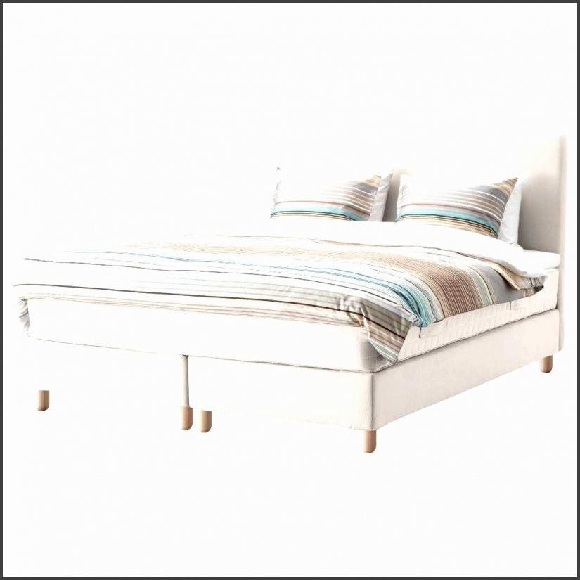 50 Galerie Foto Von Ausziehbares Bett Auf Gleicher Höhe  Grundrisse von Bett Zum Ausziehen Gleiche Höhe Bild