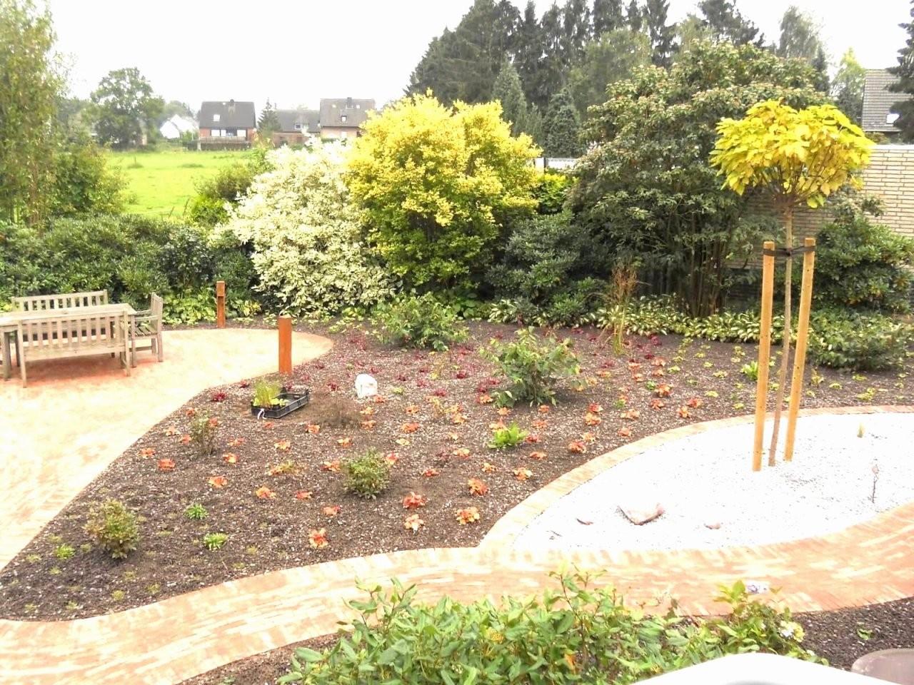 52 Foto Fotos Von Gartengestaltung Mit Gräsern Und Kies  Grundrisse von Gartengestaltung Mit Gräsern Und Kies Photo