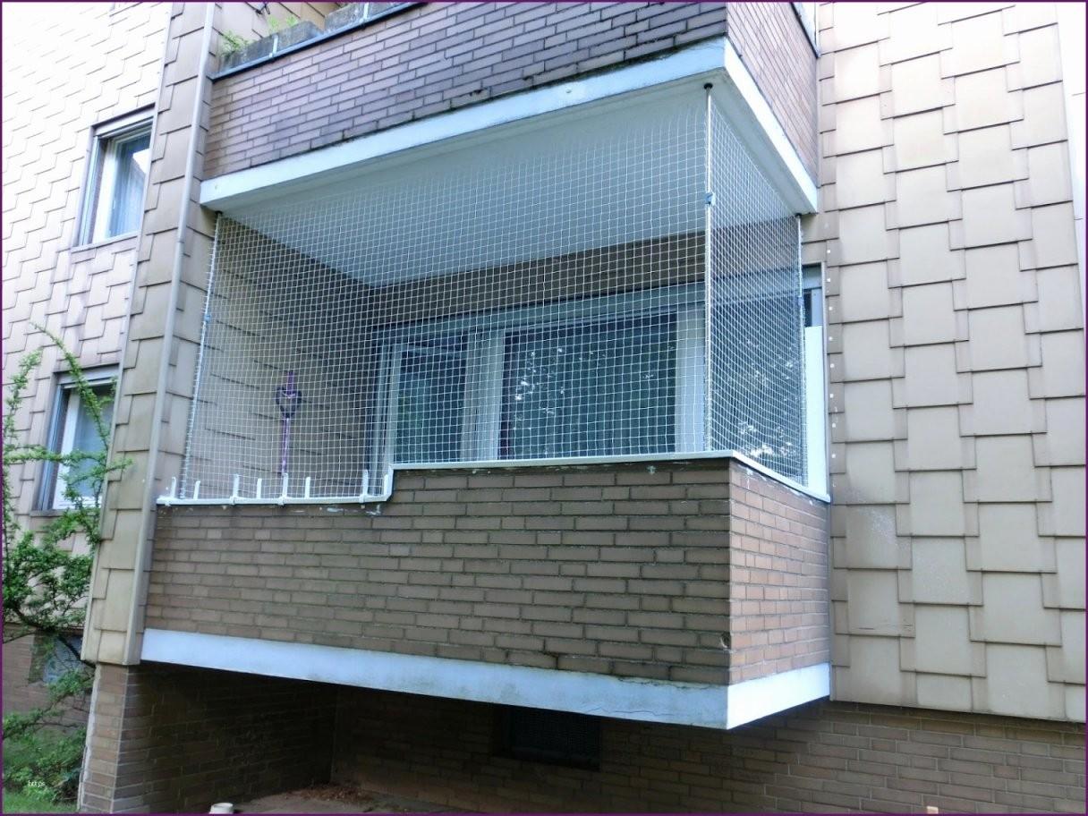 73 Awesome Katzennetz Balkon Befestigen Ohne Bohren Bilder  Balkon von Katzenschutznetz Balkon Ohne Bohren Photo