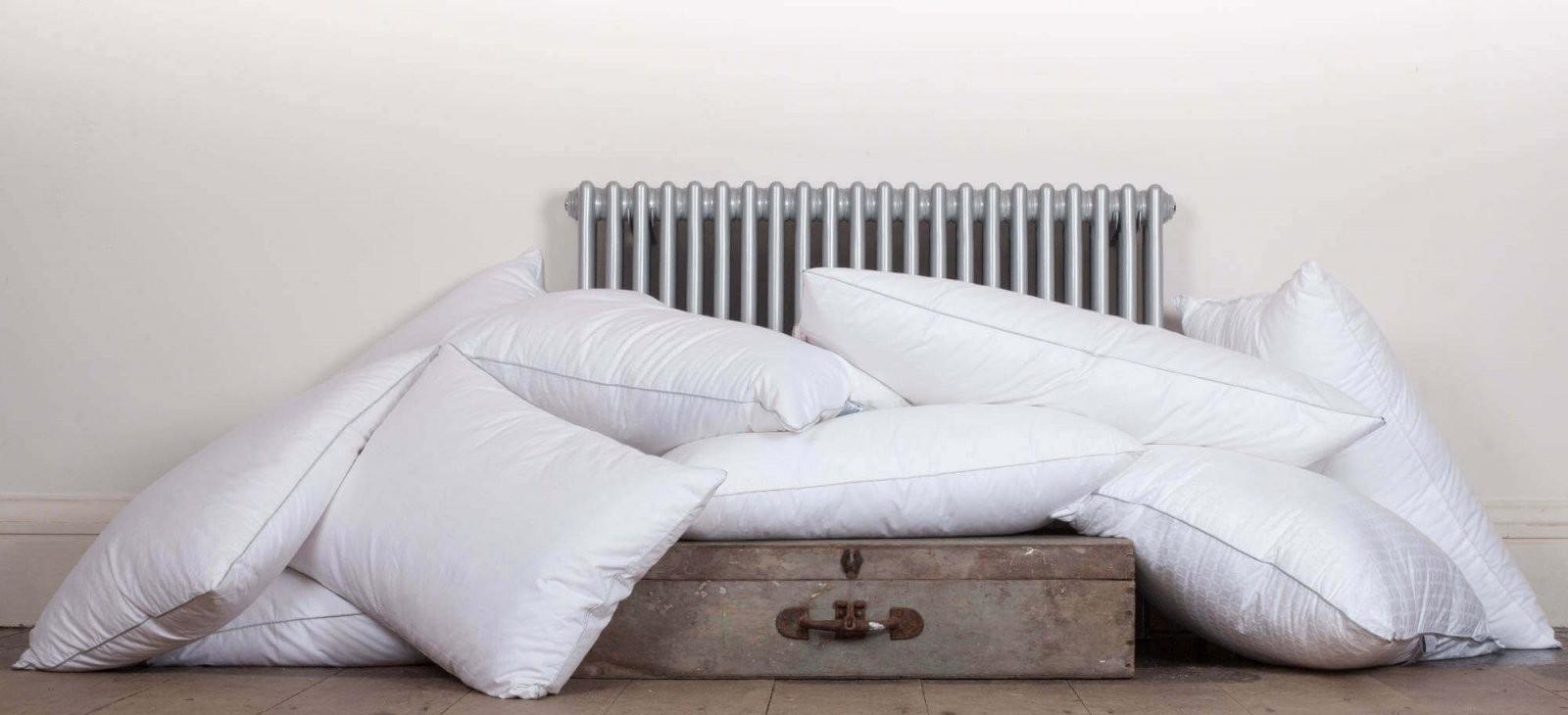 Allergiker Bettwäsche Milbenallergie Wirksam Vorbeugen von Allergiker Bettwäsche Englisch Bild