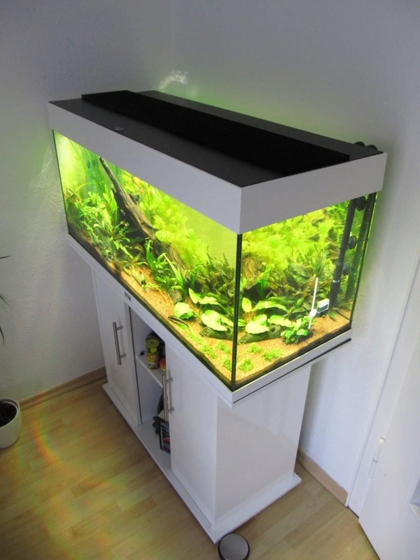 Aquarium Led Beleuchtung Selber Bauen  Schullebernd's Technikwelt von Bild Mit Beleuchtung Selber Machen Bild