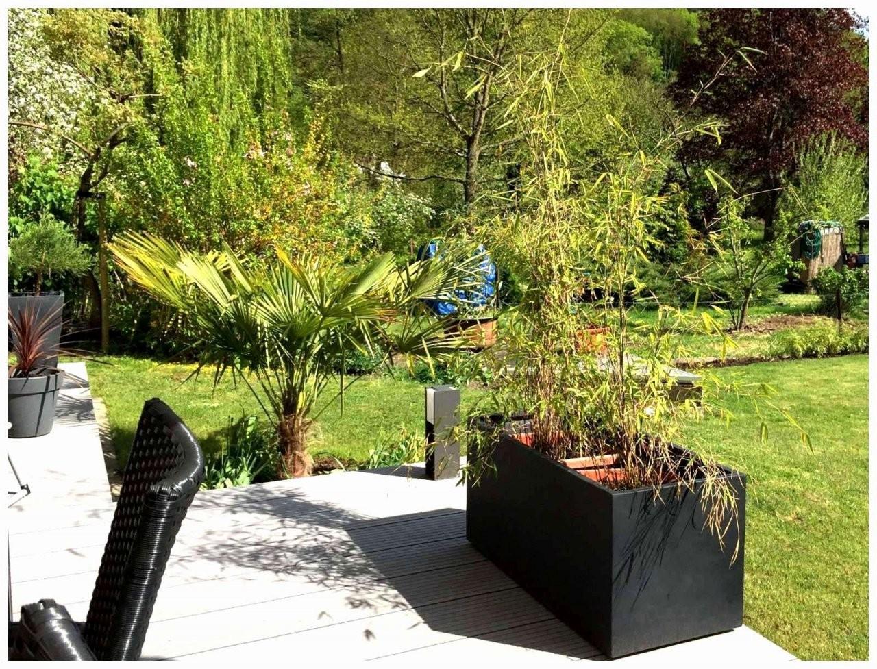 Badewanne Garten Elegant Garten Und Landschaftsbau Stuttgart Elegant von Badewanne Für Den Garten Photo