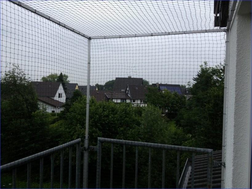 Balkon Ohne Dach Katzensicher Machen Design Von Balkon Dach Ohne Bohren von Balkon Dach Ohne Bohren Photo