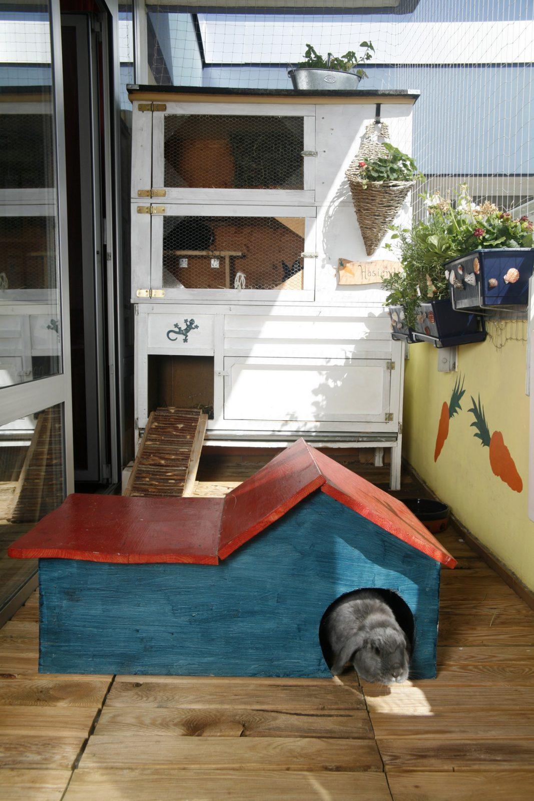 Bastelanleitungen Für Kaninchenfreunde  Ein Herz Für Tiere Magazin von Kaninchen Spielplatz Selber Bauen Photo