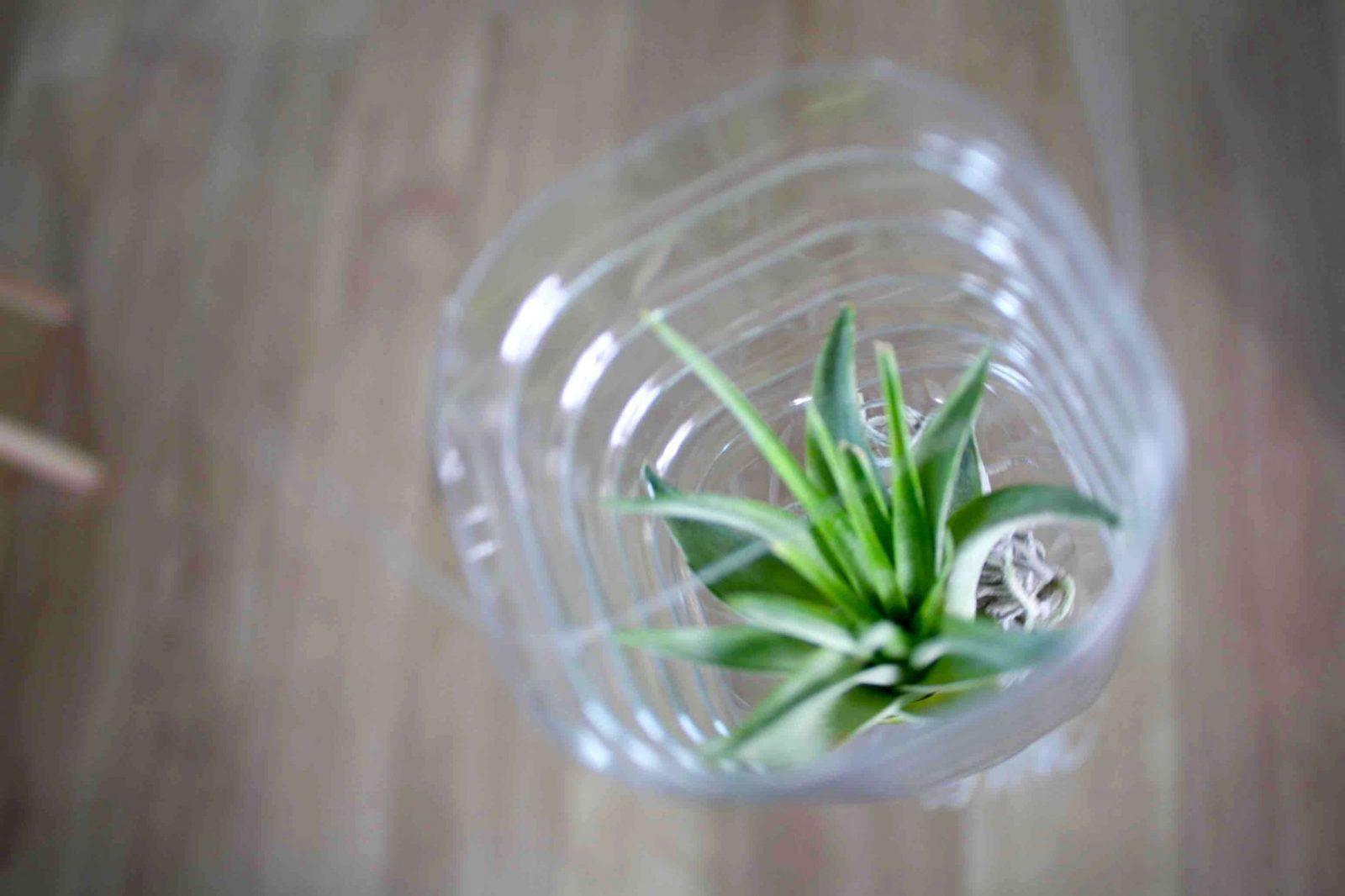 Basteln Mit Tontöpfen Für Den Garten Einzigartig Upcycling Ideen Zum von Upcycling Ideen Zum Selbermachen Bild