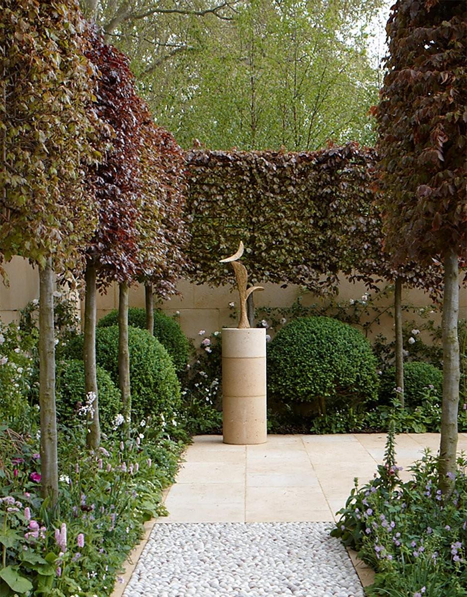 Besondere) Bäume Für Kleine Gärten Lesen Sie Unsere Tipps von Schnell Wachsende Bäume Für Kleine Gärten Bild