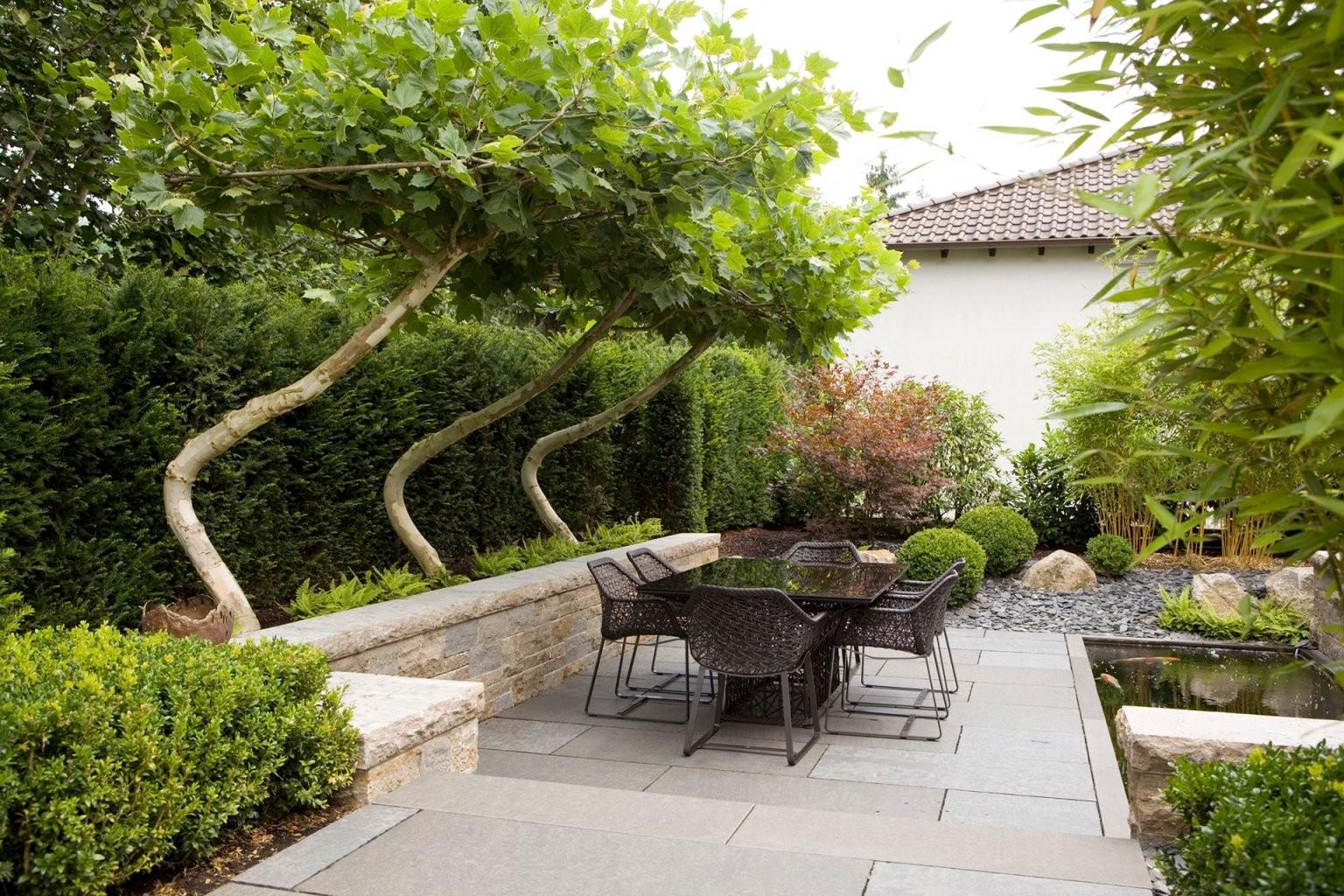 Besondere) Bäume Für Kleine Gärten Lesen Sie Unsere Tipps von Schnell Wachsende Bäume Für Kleine Gärten Photo