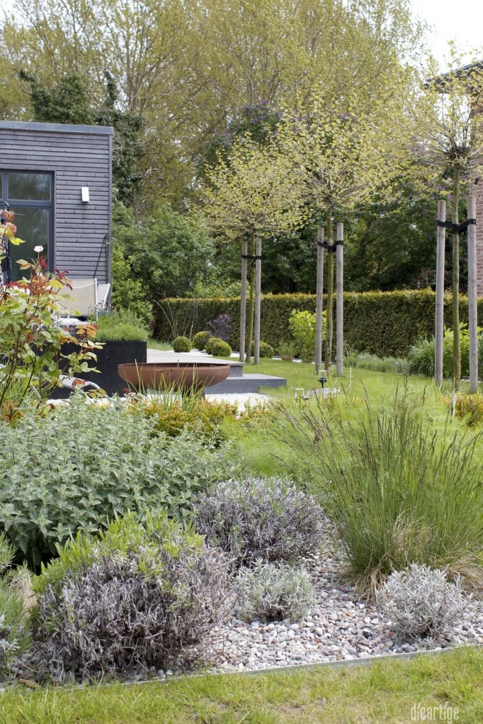 Dieartigeblog  Garten  Kiesbeet Mit Lavendel Katzenminze Rose von Gartengestaltung Mit Gräsern Und Kies Photo