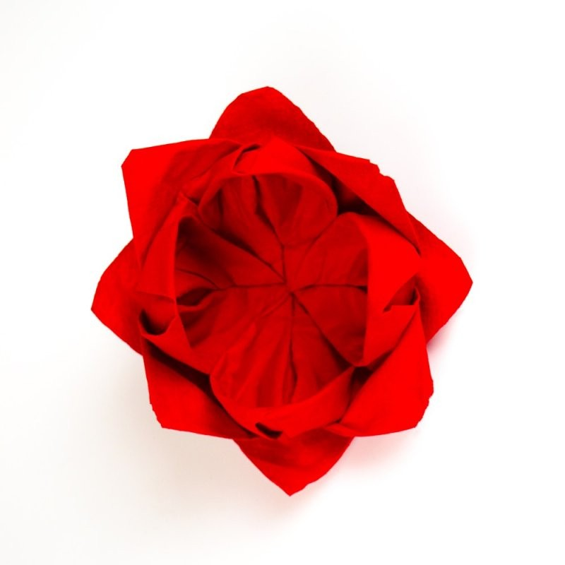 ᐅServietten Rose Anleitung  Servietten Falten  Papierservietten von Servietten Falten Blume Anleitung Photo