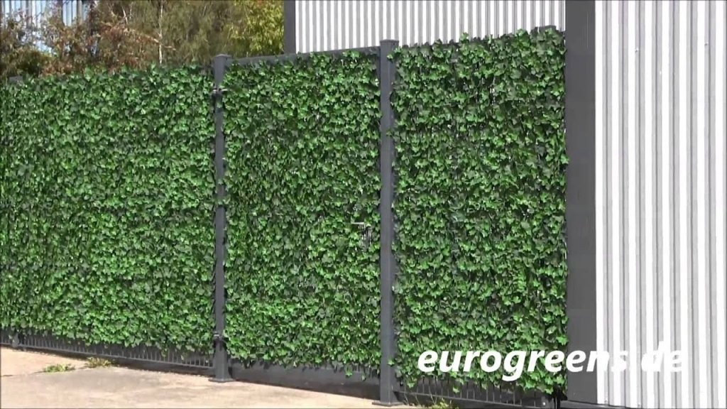Eurogreens Kunstpflanzen Efeuhecke  Youtube von Sichtschutz Efeu Am Laufenden Meter Photo