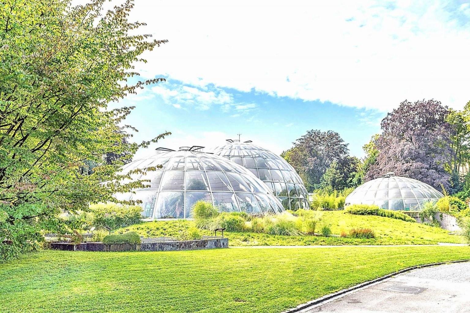 Flora Garten Einzigartig Wohnen Und Garten Zeitschrift Genial Wohnen von Wohnen Und Garten Abo Bild