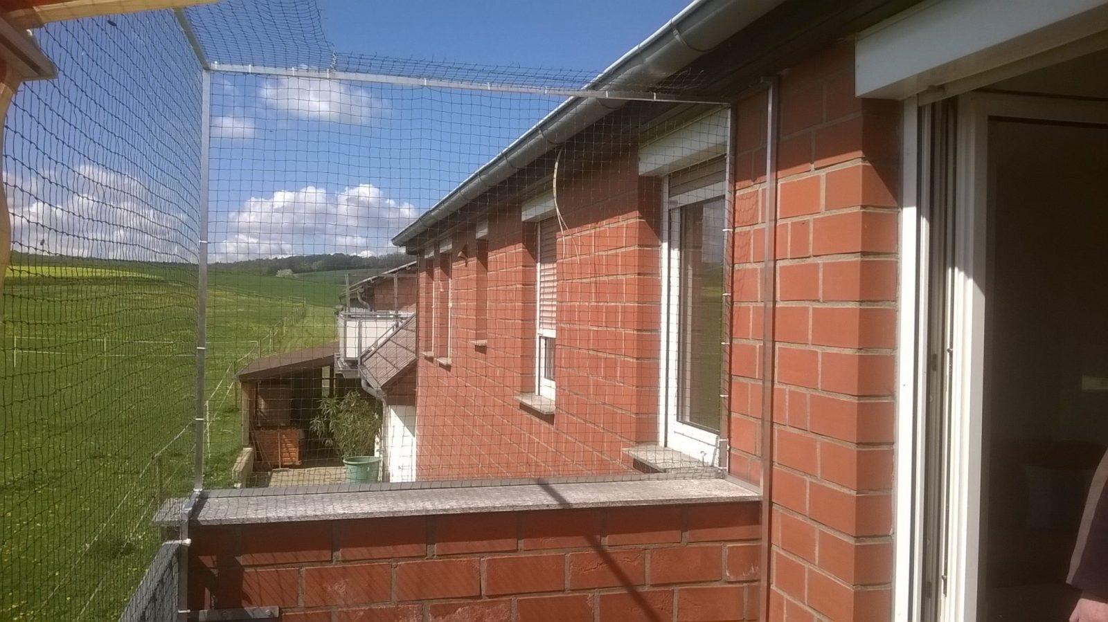 Freistehendes Katzennetz Für Balkon Ohne Bohren   Katzennetze Nrw von Katzenschutznetz Balkon Ohne Bohren Bild