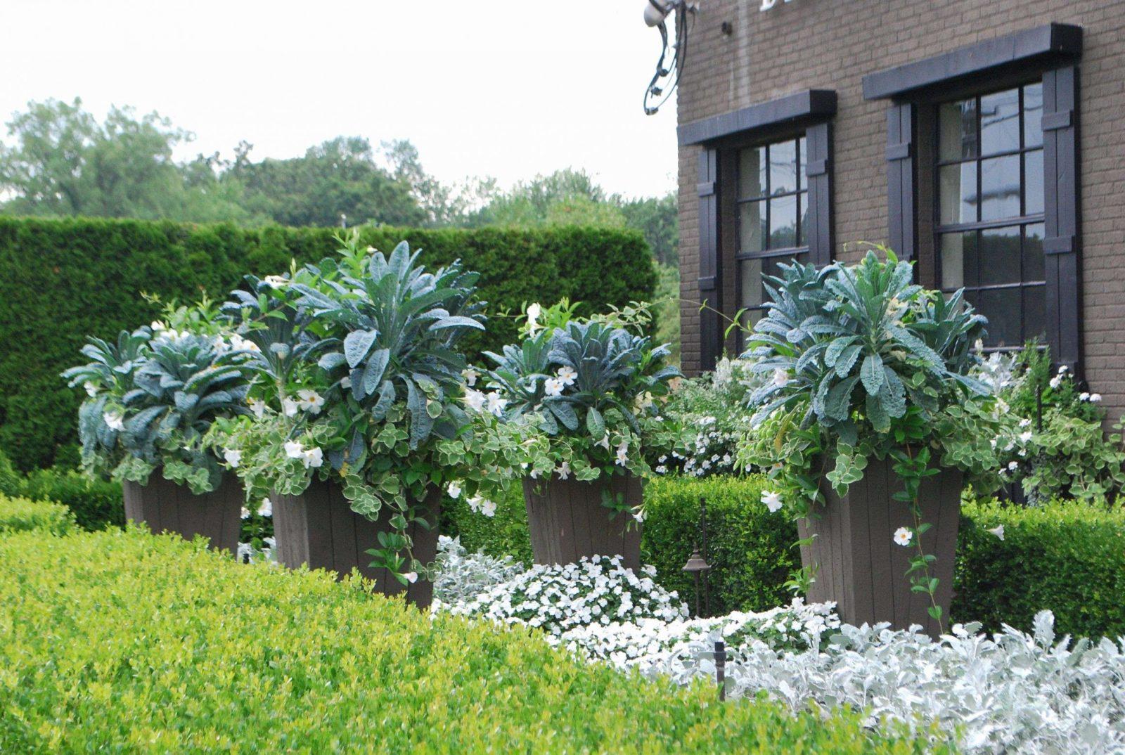 Garten Gestalten Mit Pflanzsteinen Neu Gartengestaltung Mit von Garten Gestalten Mit Pflanzsteinen Photo