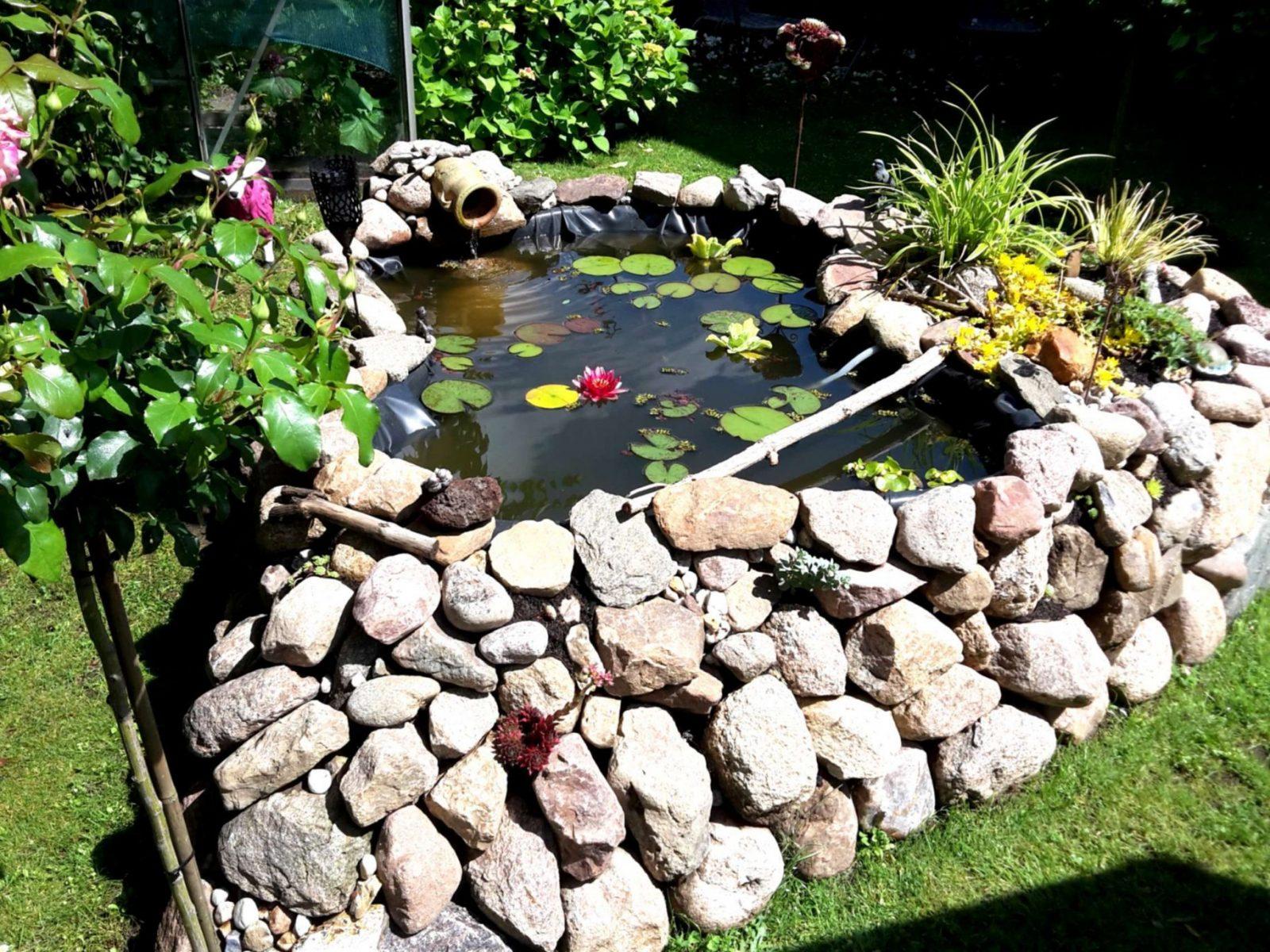 Garten Mit Steinen Anlegen Frisch 42 Schön Gartengestaltung Mit von Gartengestaltung Mit Steinen Und Kies Bilder Photo