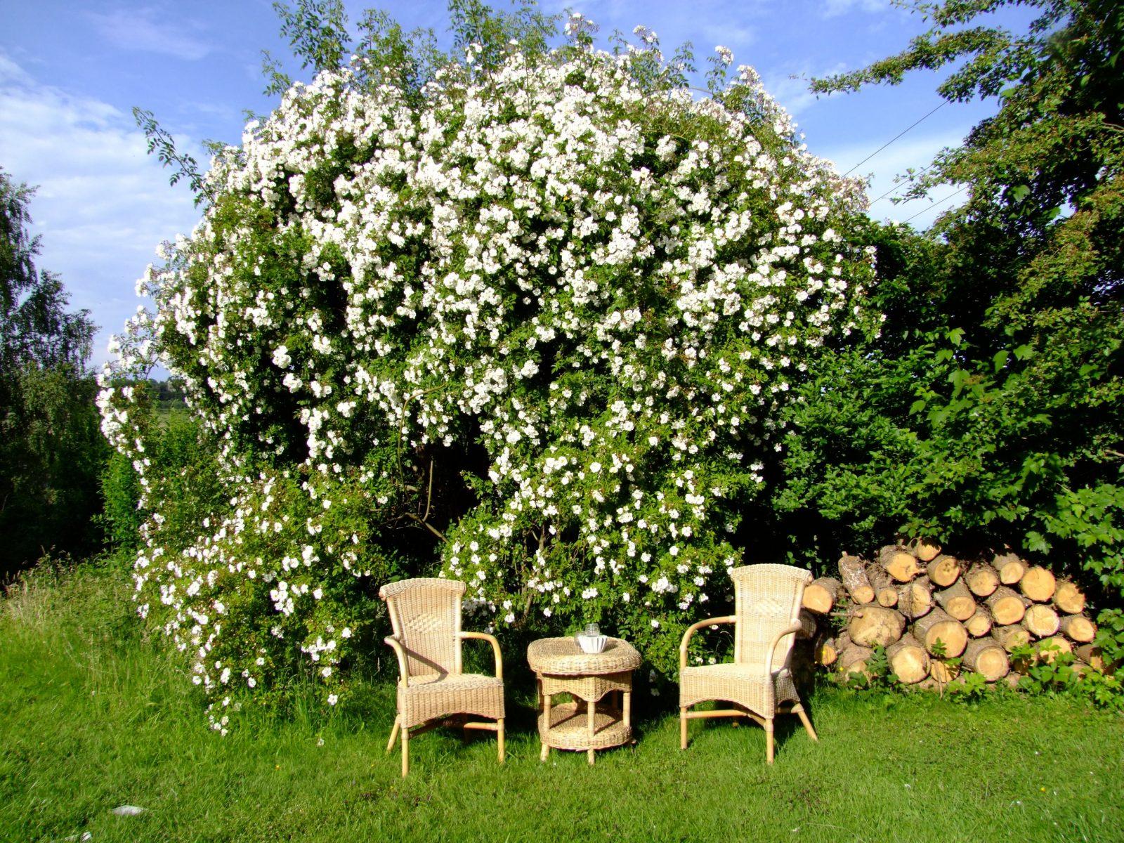 Garten Sitzecke Gestalten Ideen Für Kleine  Große Gärten von Kleine Sitzecke Im Garten Photo