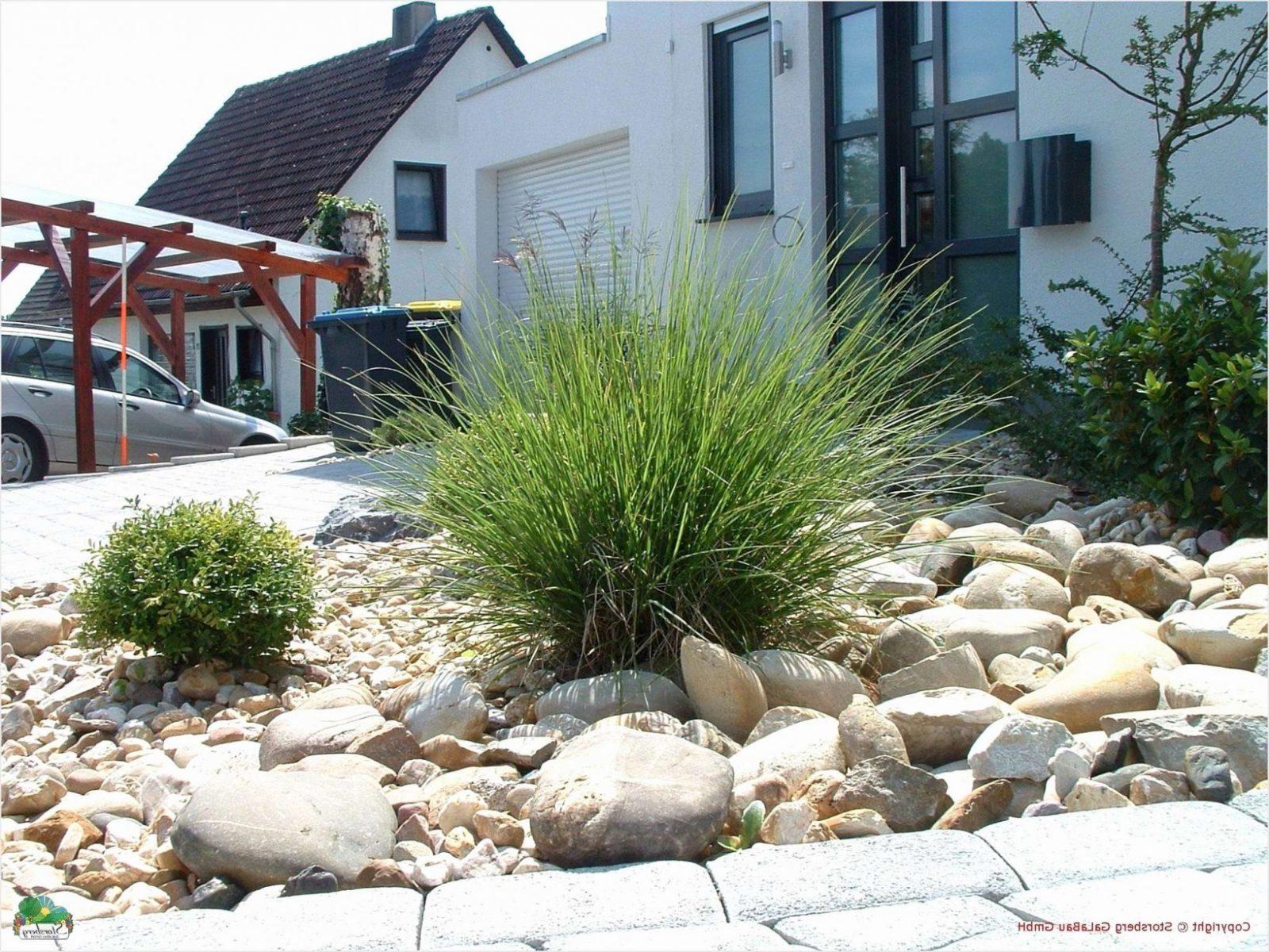 Gartengestaltung Mit Kies Bilder Schön Inspirierend Vorgarten Mit von Gartengestaltung Mit Kies Bilder Bild