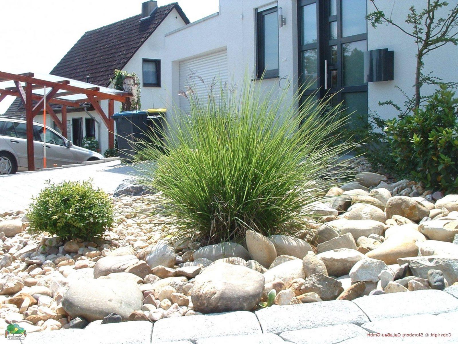 Gartengestaltung Mit Kies Und Gräsern Von Beetgestaltung Mit Steinen von Gartengestaltung Mit Gräsern Und Kies Bild