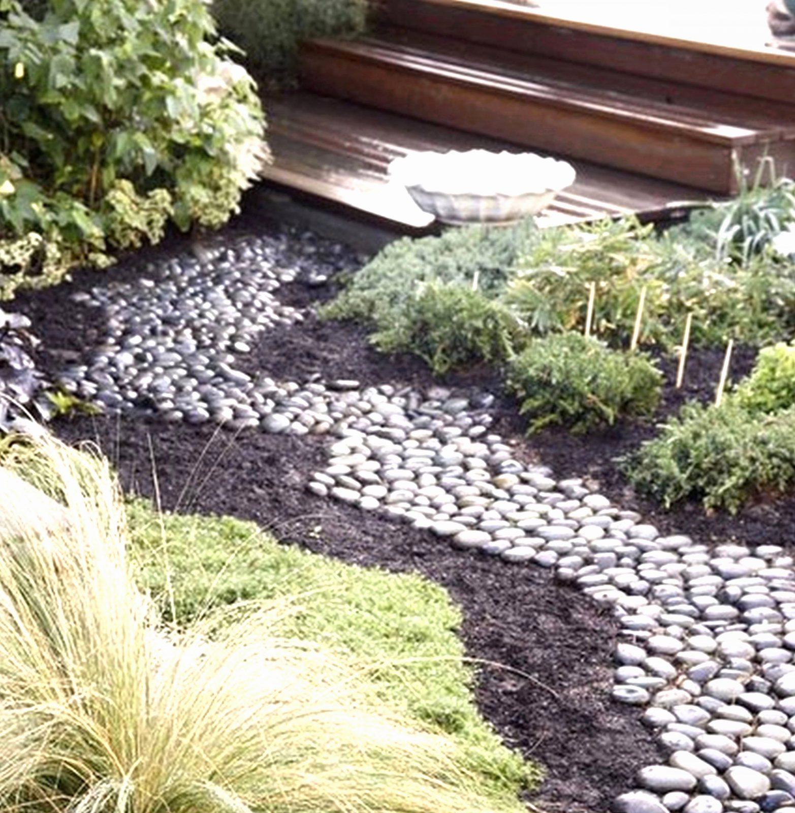 Gartengestaltung Mit Kies Und Gräsern Von Beetgestaltung Mit Steinen von Gartengestaltung Mit Kies Und Gräsern Bild