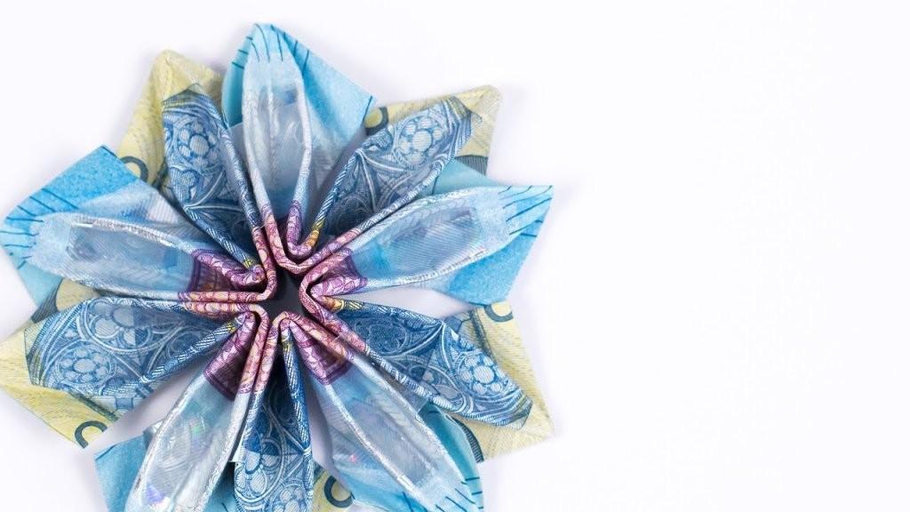 Geld Falten Blume Eine Blüte Aus Geldscheinen Basteln Diy von Blumen Falten Aus Geldscheinen Photo