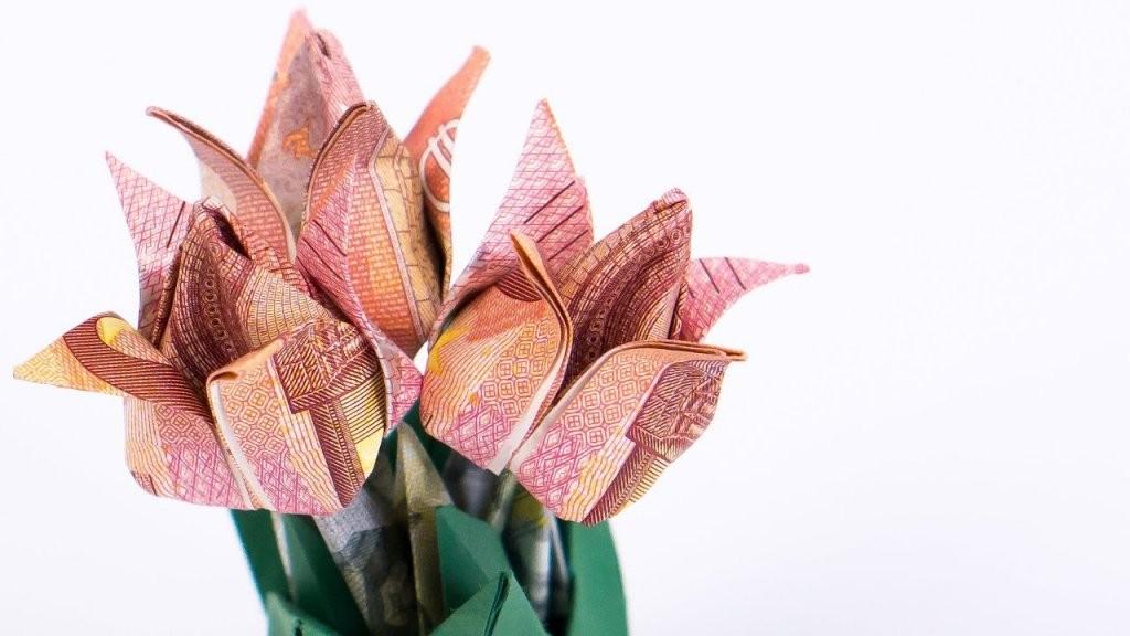 Geld Falten Blumen Tulpen Blumentopf Aus Geldscheinen Basteln  Youtube von Geldscheine Falten Blume Mit Einem Schein Photo